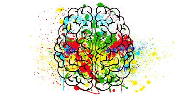 brain-2062048_640